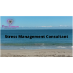 stress management consultant